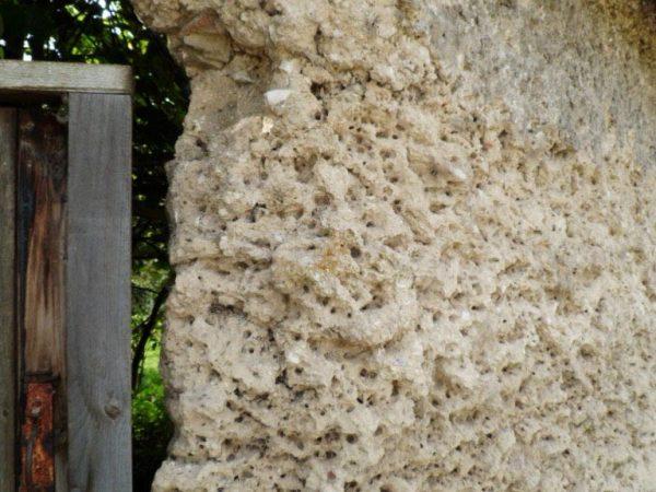 Hampshire chalk cob boundary wall beforerepairs